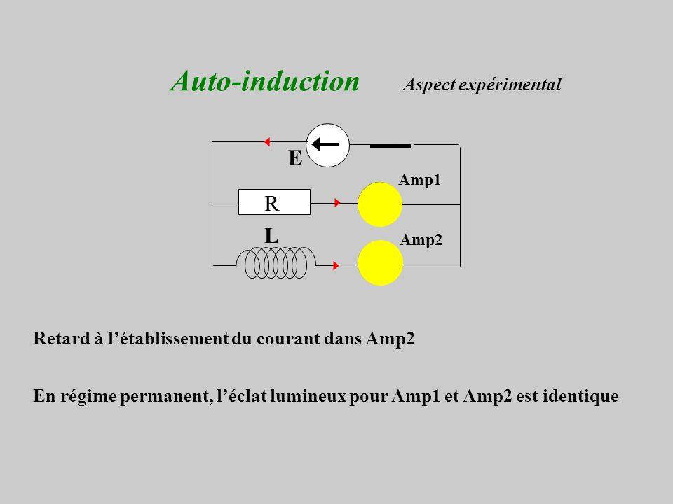 Auto-induction Aspect expérimental
