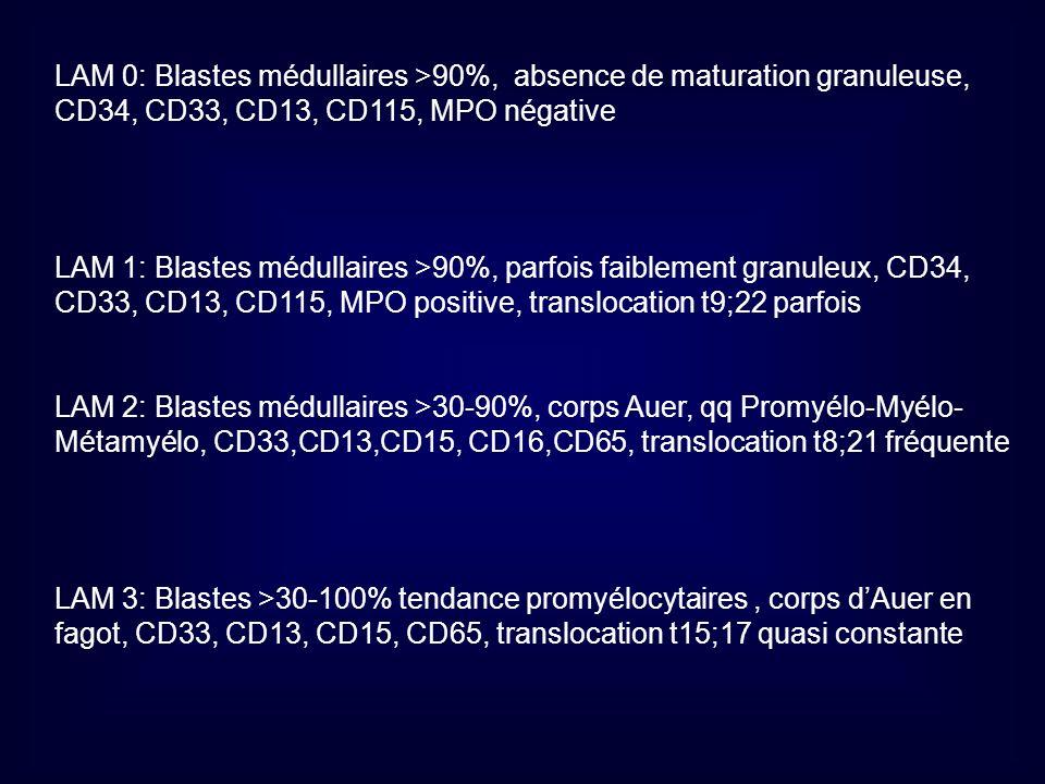 LAM 0: Blastes médullaires >90%, absence de maturation granuleuse, CD34, CD33, CD13, CD115, MPO négative