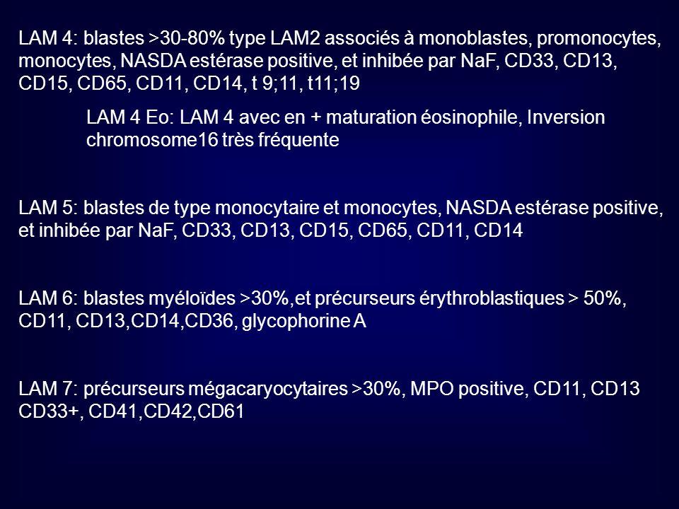 LAM 4: blastes >30-80% type LAM2 associés à monoblastes, promonocytes, monocytes, NASDA estérase positive, et inhibée par NaF, CD33, CD13, CD15, CD65, CD11, CD14, t 9;11, t11;19