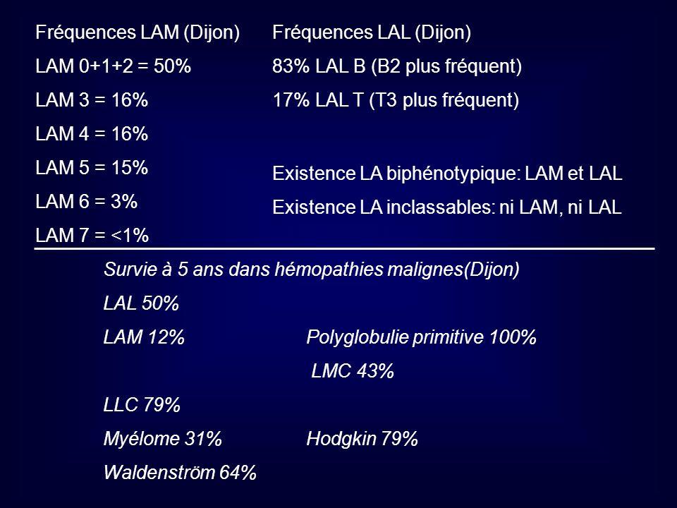 Fréquences LAM (Dijon)