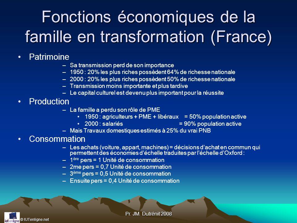 Fonctions économiques de la famille en transformation (France)