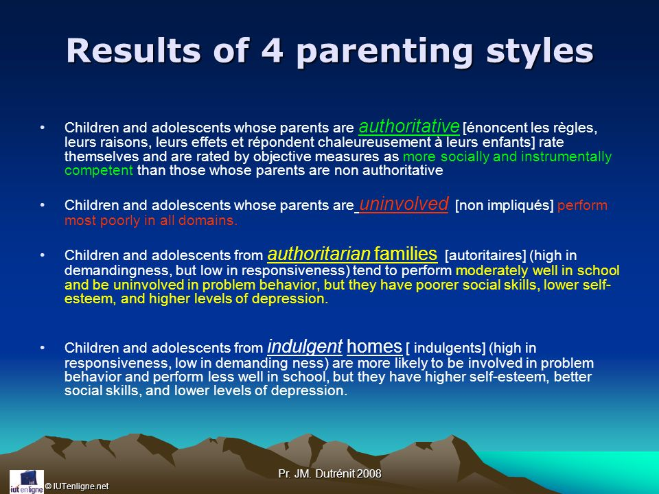 Results of 4 parenting styles