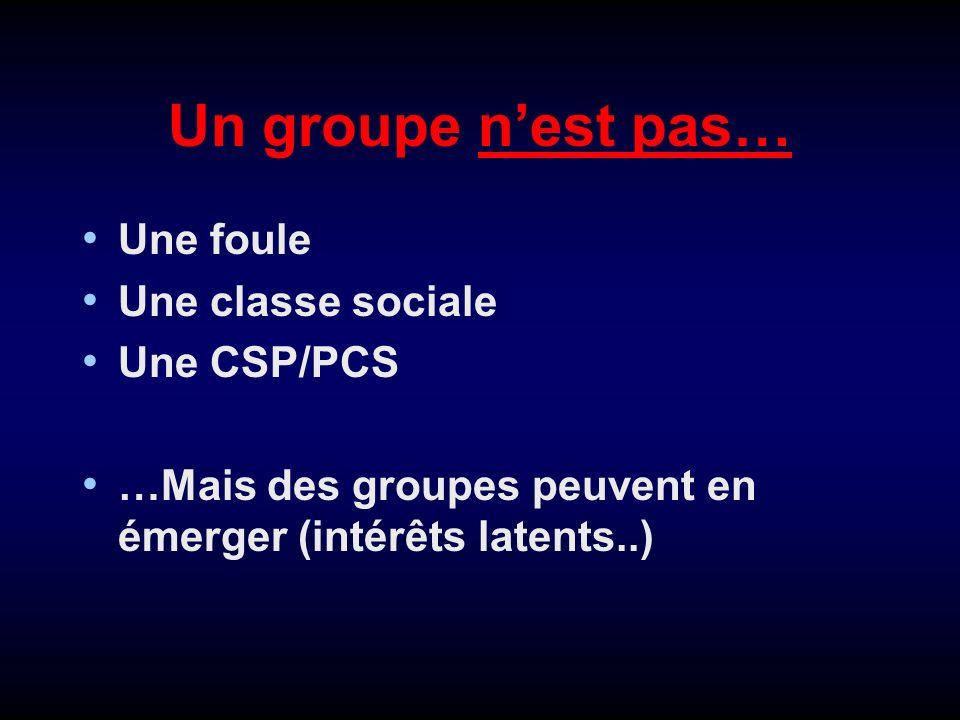 Un groupe n'est pas… Une foule Une classe sociale Une CSP/PCS