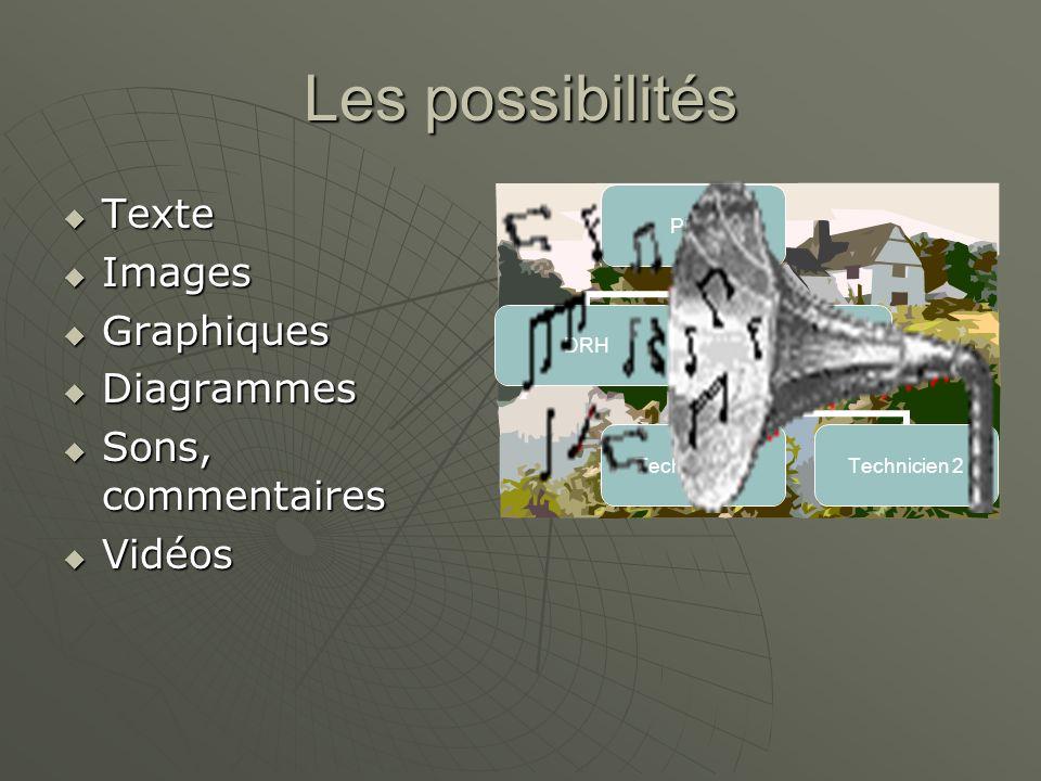 Les possibilités Texte Images Graphiques Diagrammes Sons, commentaires
