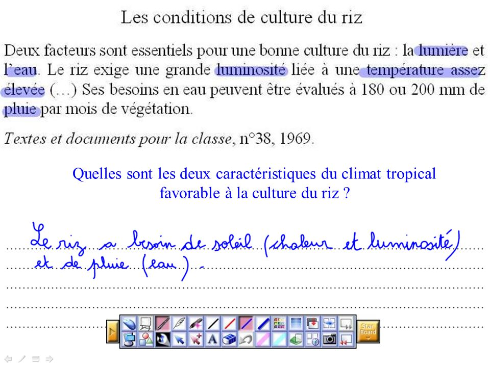 Les conditions de culture du riz