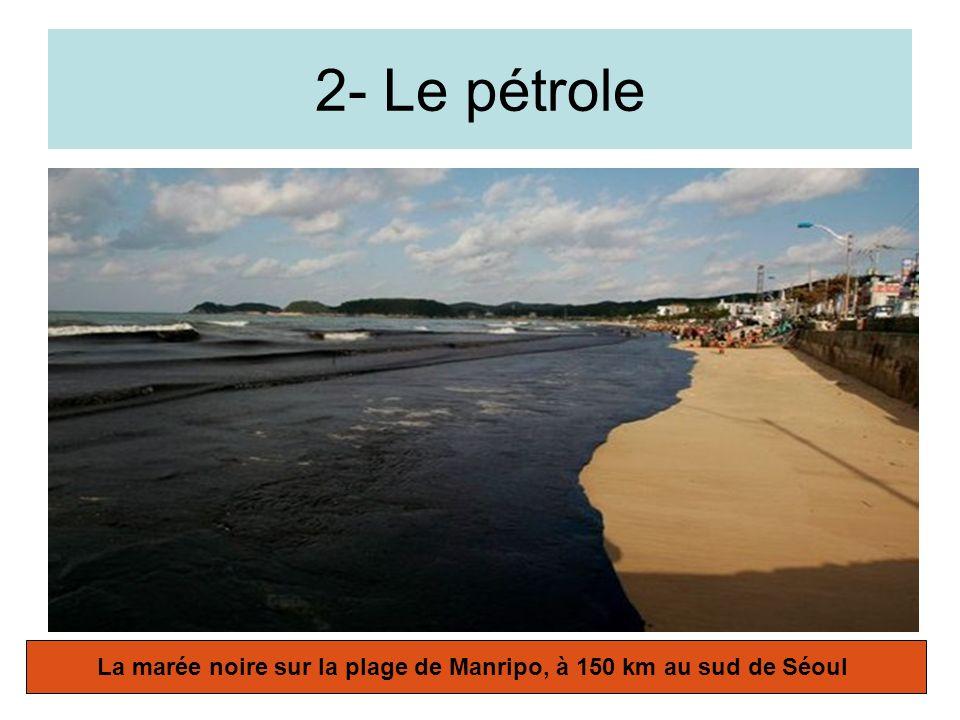 La marée noire sur la plage de Manripo, à 150 km au sud de Séoul