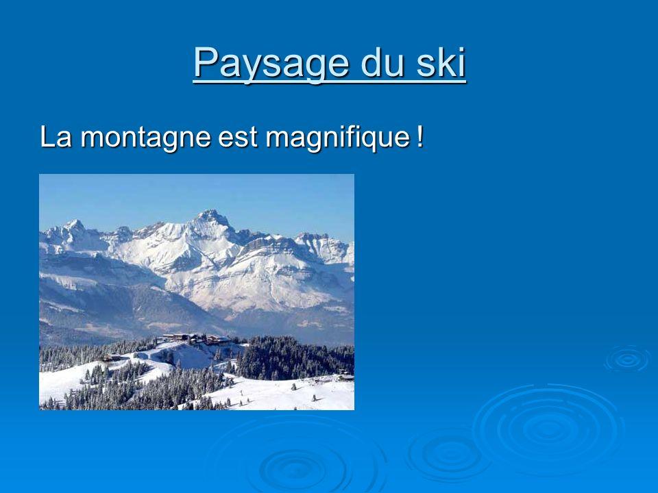 Paysage du ski La montagne est magnifique !