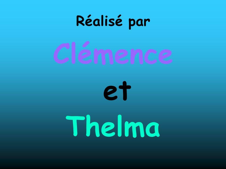 Réalisé par Clémence et Thelma