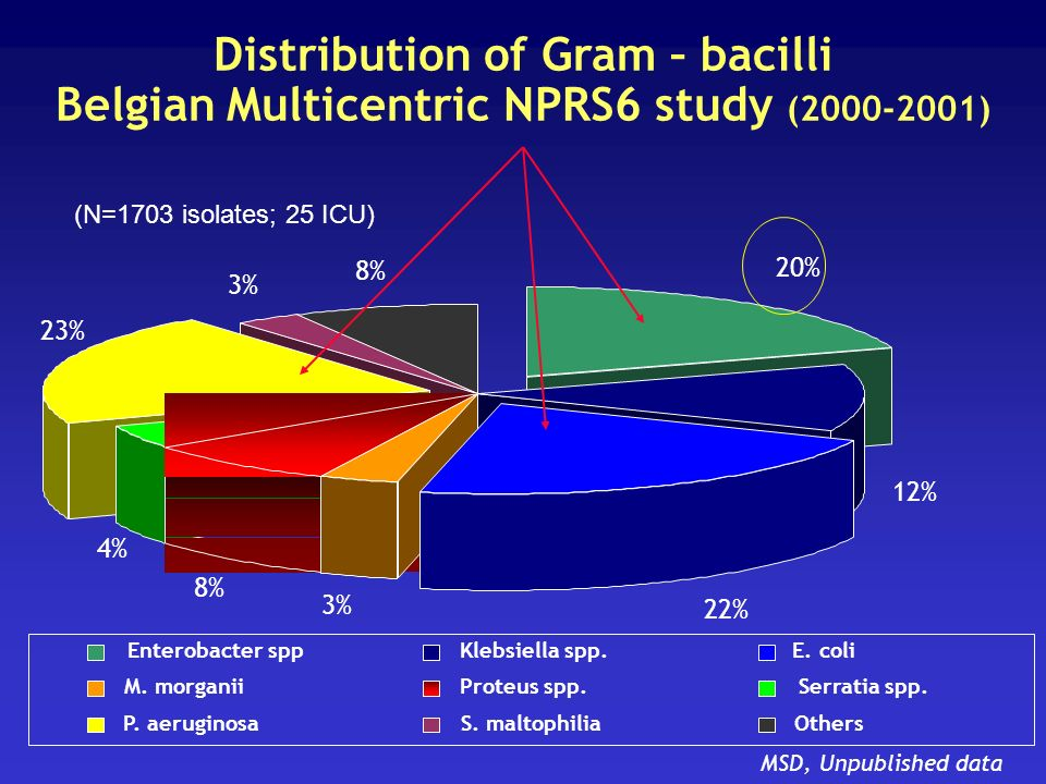 Distribution of Gram – bacilli Belgian Multicentric NPRS6 study ( )