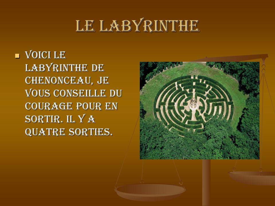 Le labyrinthe Voici le labyrinthe de Chenonceau, je vous conseille du courage pour en sortir.
