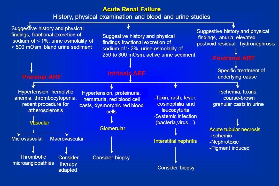 Acute Renal Failure Prerenal ARF