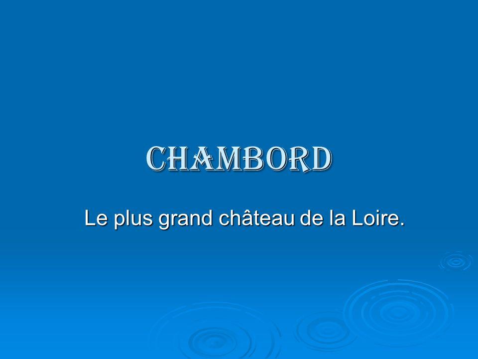 Le plus grand château de la Loire.
