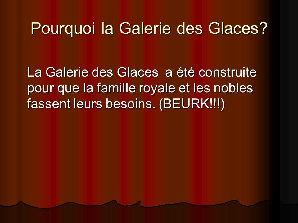 Pourquoi la Galerie des Glaces