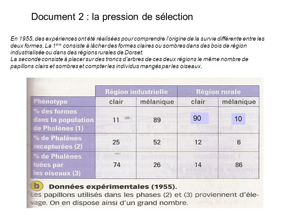 Document 2 : la pression de sélection