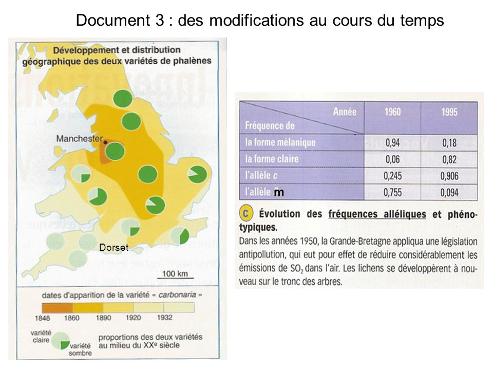 Document 3 : des modifications au cours du temps