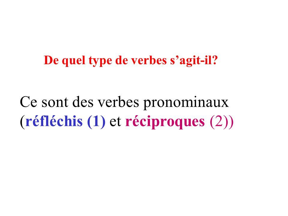 Ce sont des verbes pronominaux (réfléchis (1) et réciproques (2))