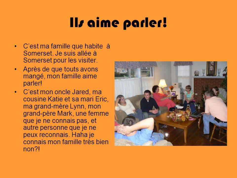 Ils aime parler! C'est ma famille que habite à Somerset. Je suis allée à Somerset pour les visiter.