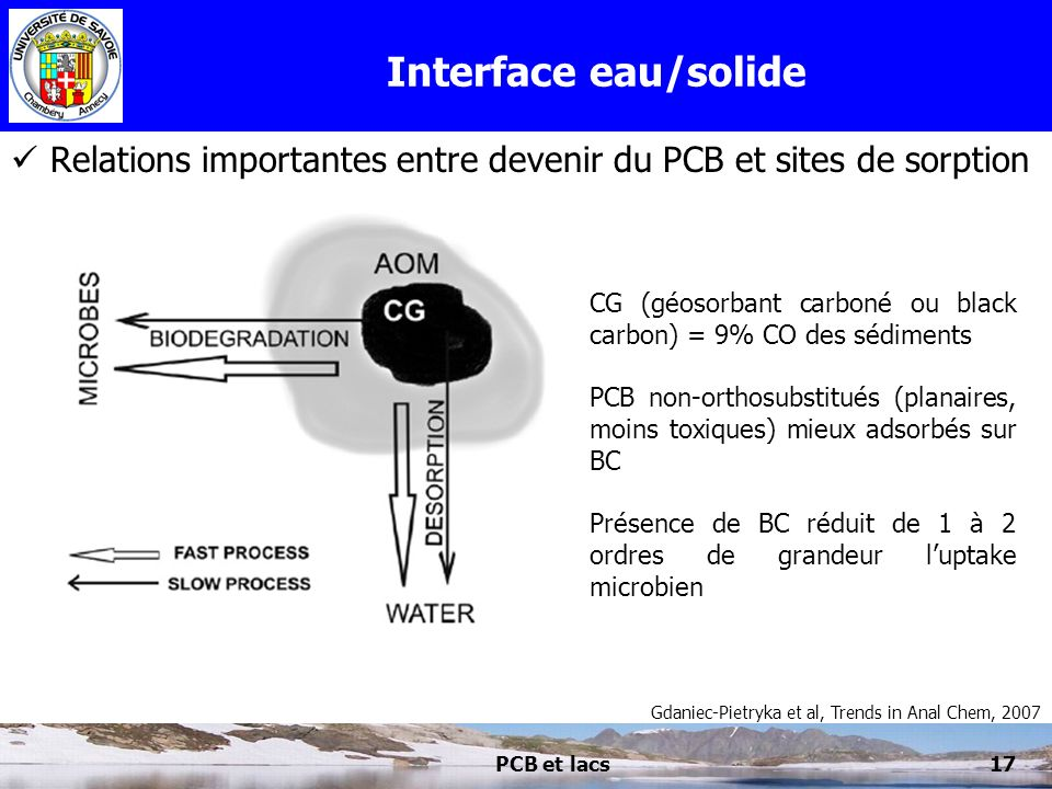 Interface eau/solide Relations importantes entre devenir du PCB et sites de sorption. CG (géosorbant carboné ou black carbon) = 9% CO des sédiments.