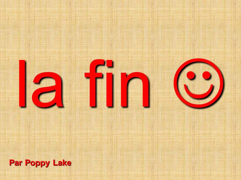 la fin  Par Poppy Lake