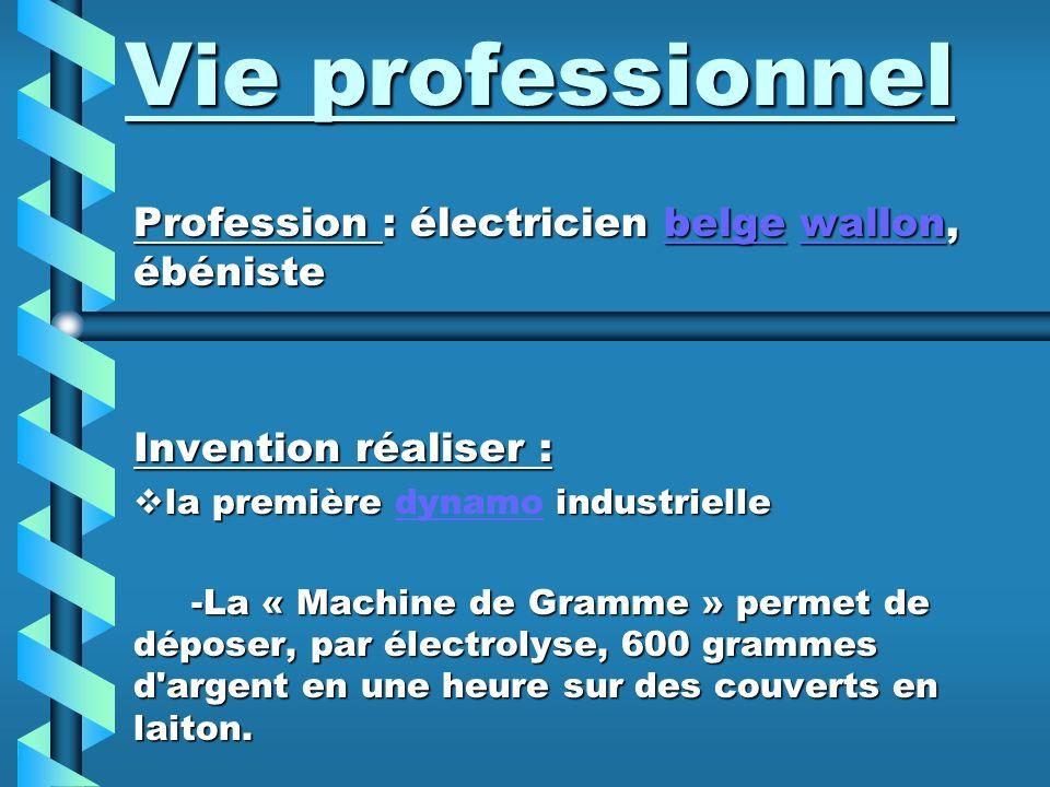 Vie professionnel Profession : électricien belge wallon, ébéniste
