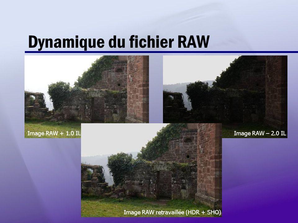 Dynamique du fichier RAW