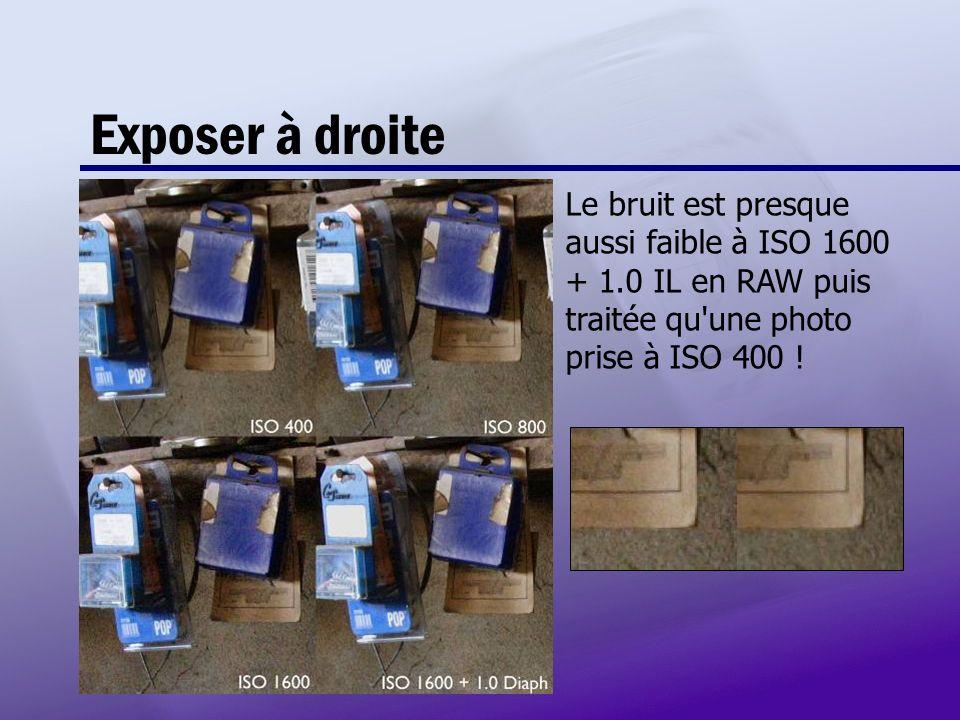 Exposer à droite Le bruit est presque aussi faible à ISO 1600 + 1.0 IL en RAW puis traitée qu une photo prise à ISO 400 !