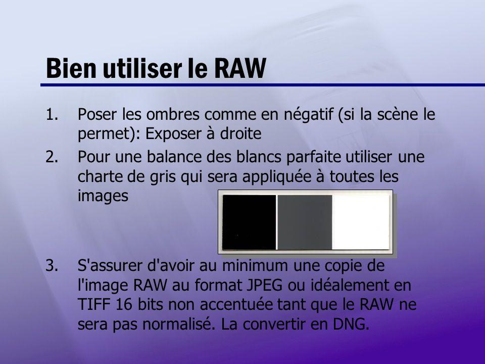 Bien utiliser le RAW Poser les ombres comme en négatif (si la scène le permet): Exposer à droite.