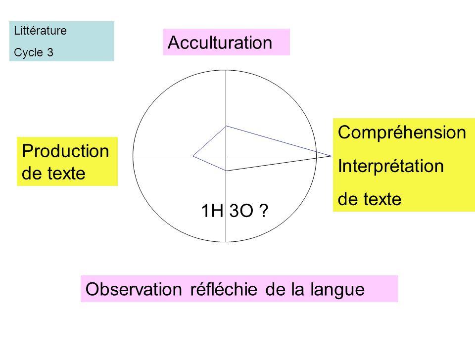 Observation réfléchie de la langue