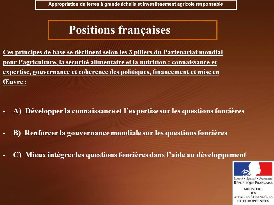 B) Renforcer la gouvernance mondiale sur les questions foncières