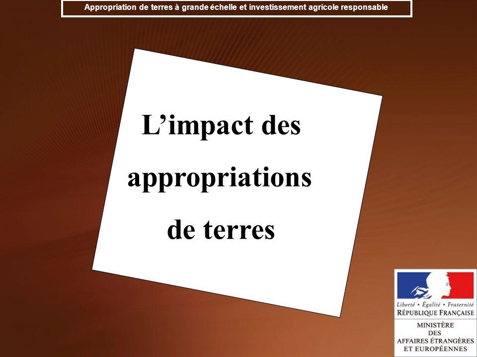 L'impact des appropriations de terres