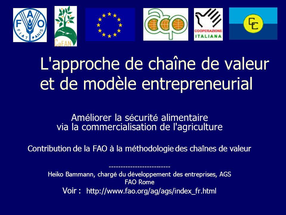 L approche de chaîne de valeur et de modèle entrepreneurial