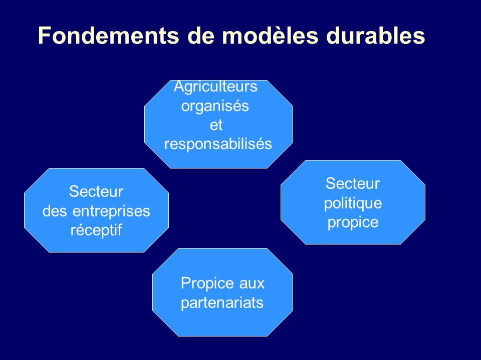 Fondements de modèles durables