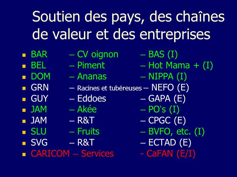 Soutien des pays, des chaînes de valeur et des entreprises