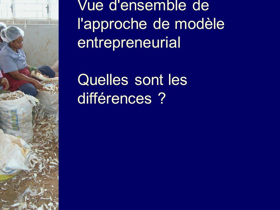 Vue d ensemble de l approche de modèle entrepreneurial Quelles sont les différences
