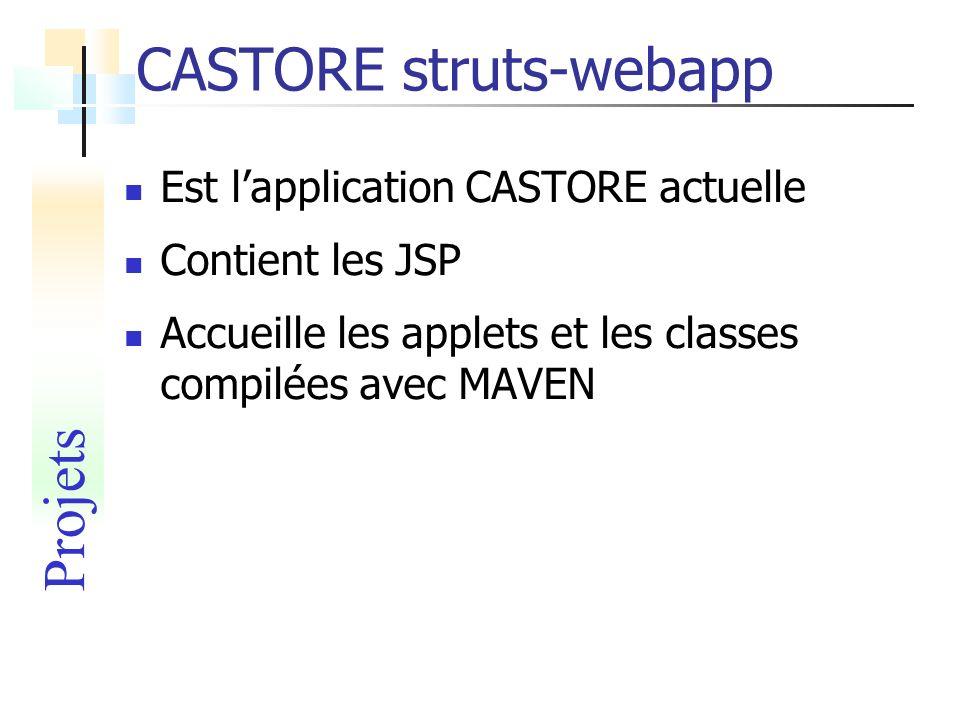 CASTORE struts-webapp