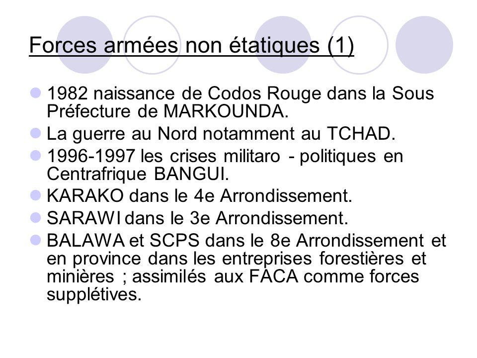 Forces armées non étatiques (1)