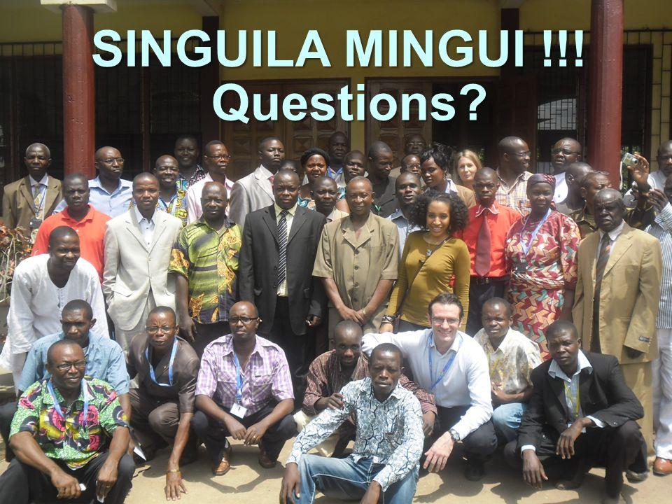 SINGUILA MINGUI !!! Questions