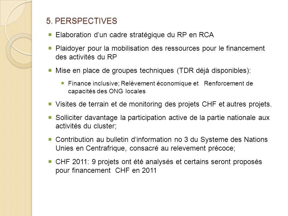5. PERSPECTIVES Elaboration d'un cadre stratégique du RP en RCA