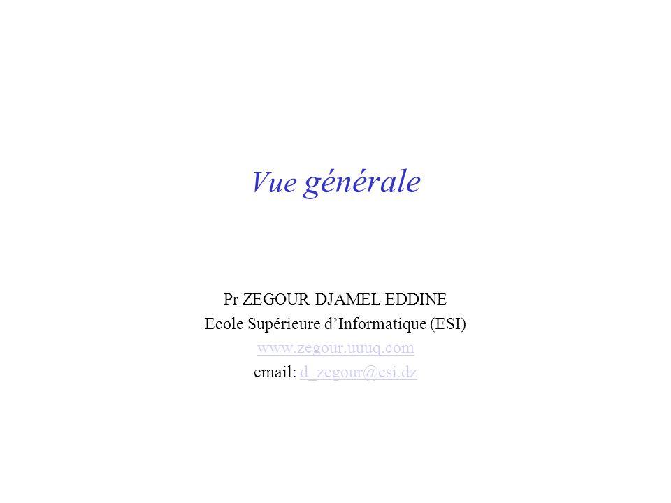 Vue générale Pr ZEGOUR DJAMEL EDDINE