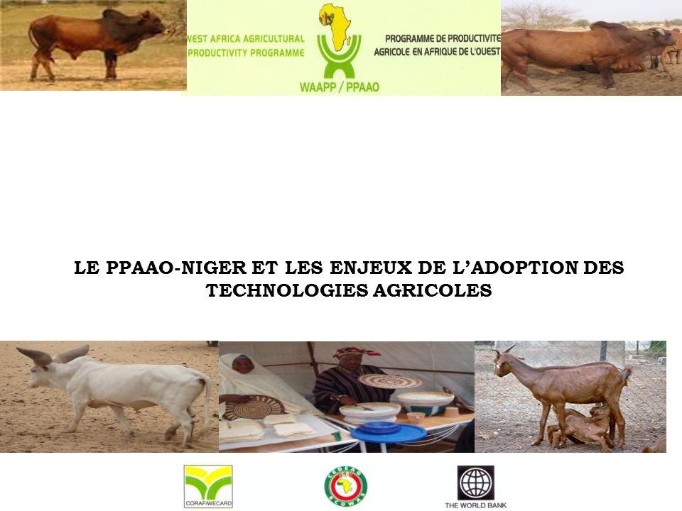 LE PPAAO-NIGER ET LES ENJEUX DE L'ADOPTION DES TECHNOLOGIES AGRICOLES