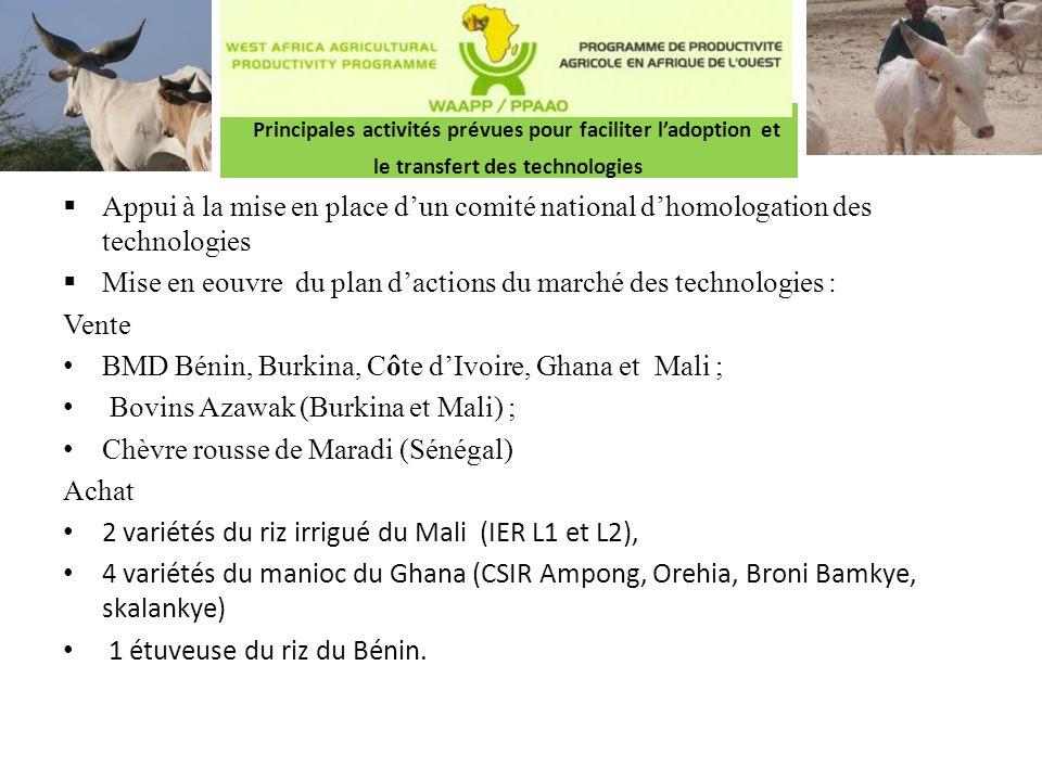 Principales activités prévues pour faciliter l'adoption et le transfert des technologies