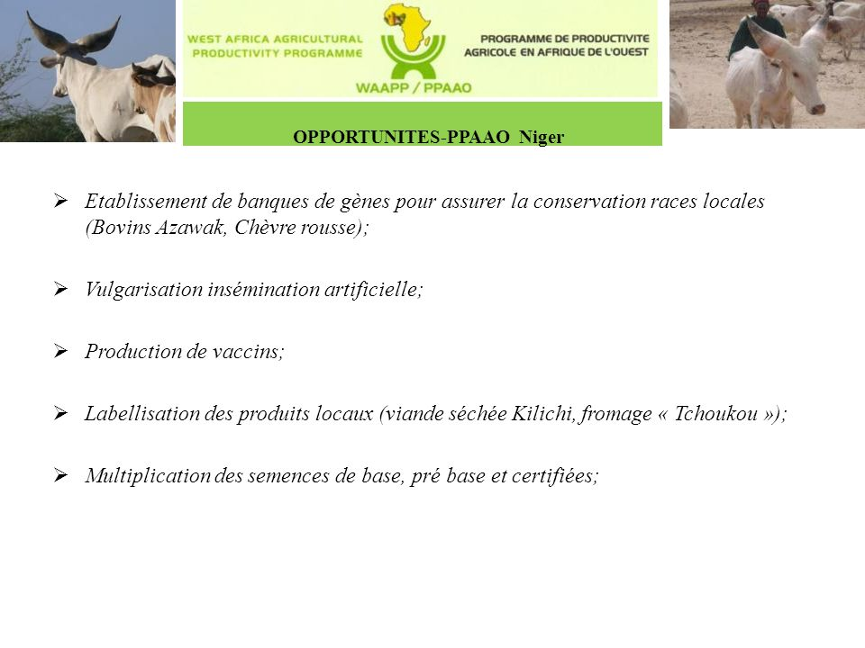 OPPORTUNITES-PPAAO Niger