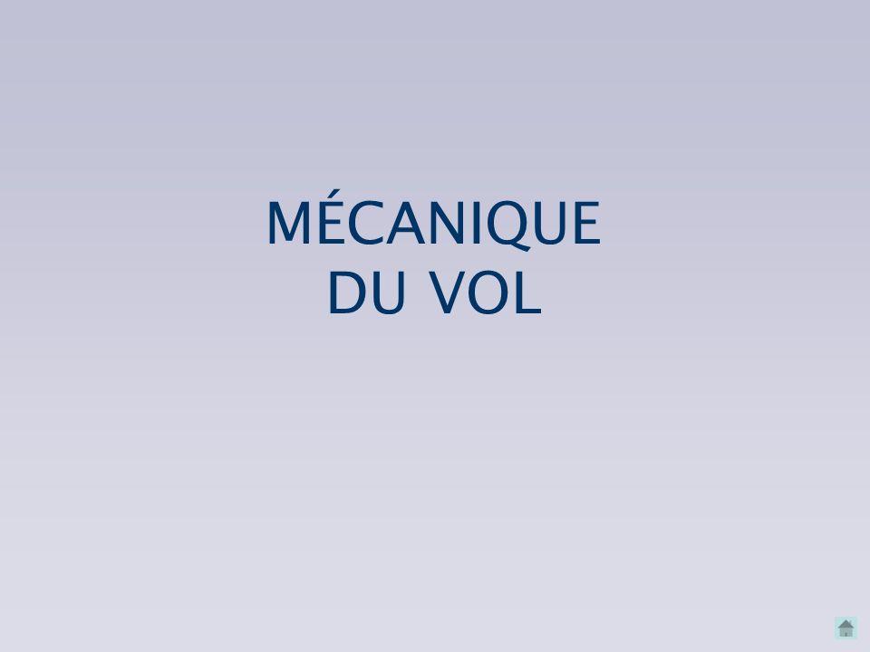 MÉCANIQUE DU VOL