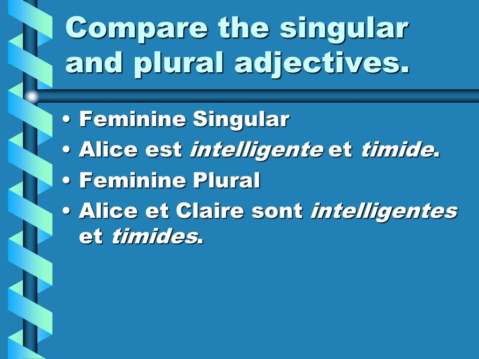 Compare the singular and plural adjectives.