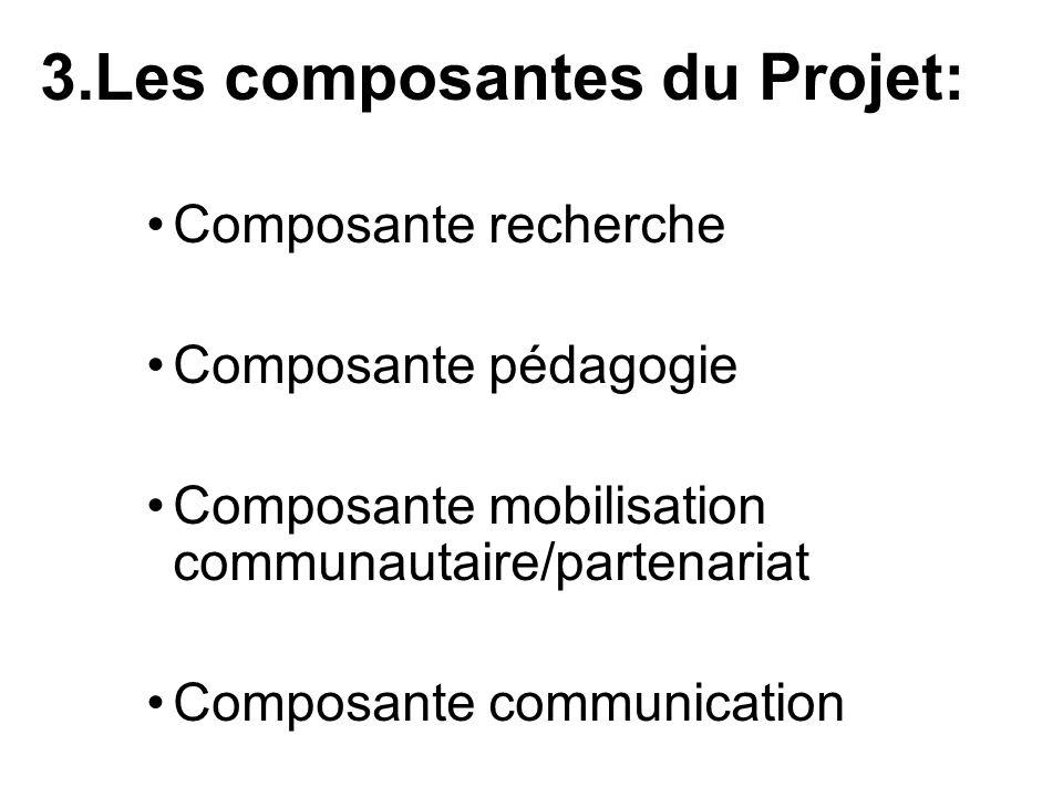 3.Les composantes du Projet: