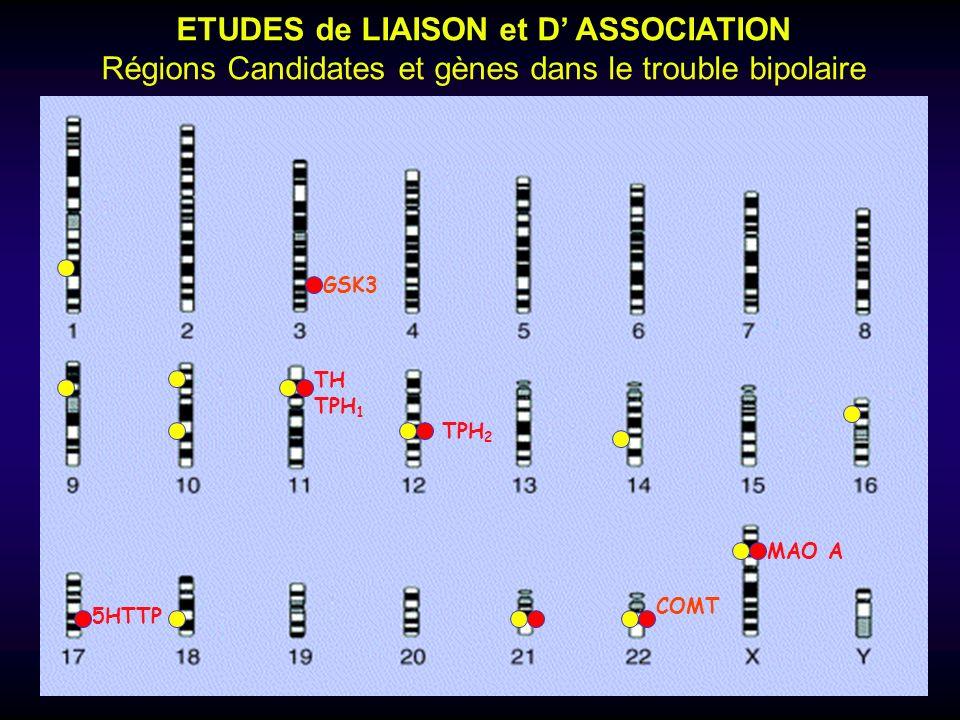 ETUDES de LIAISON et D' ASSOCIATION