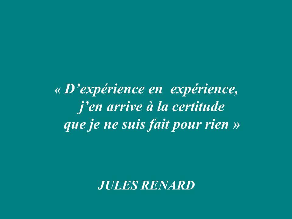« D'expérience en expérience, j'en arrive à la certitude que je ne suis fait pour rien »