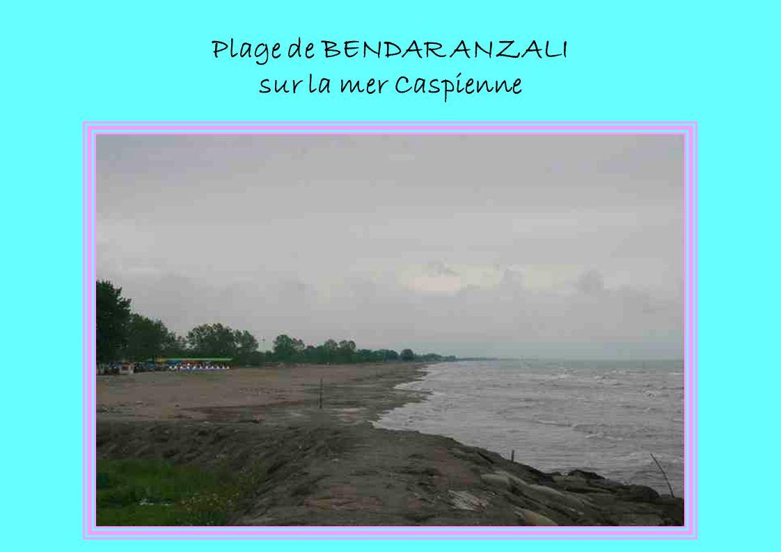 Plage de BENDAR ANZALI sur la mer Caspienne