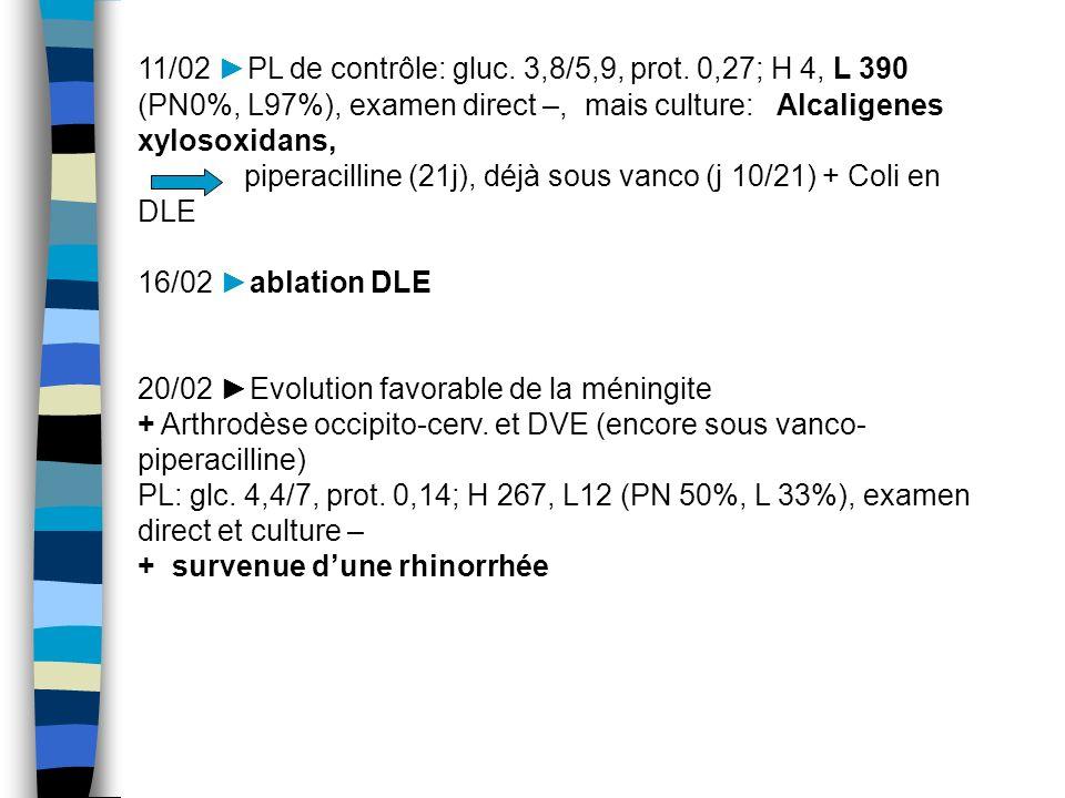11/02 ►PL de contrôle: gluc. 3,8/5,9, prot. 0,27; H 4, L 390