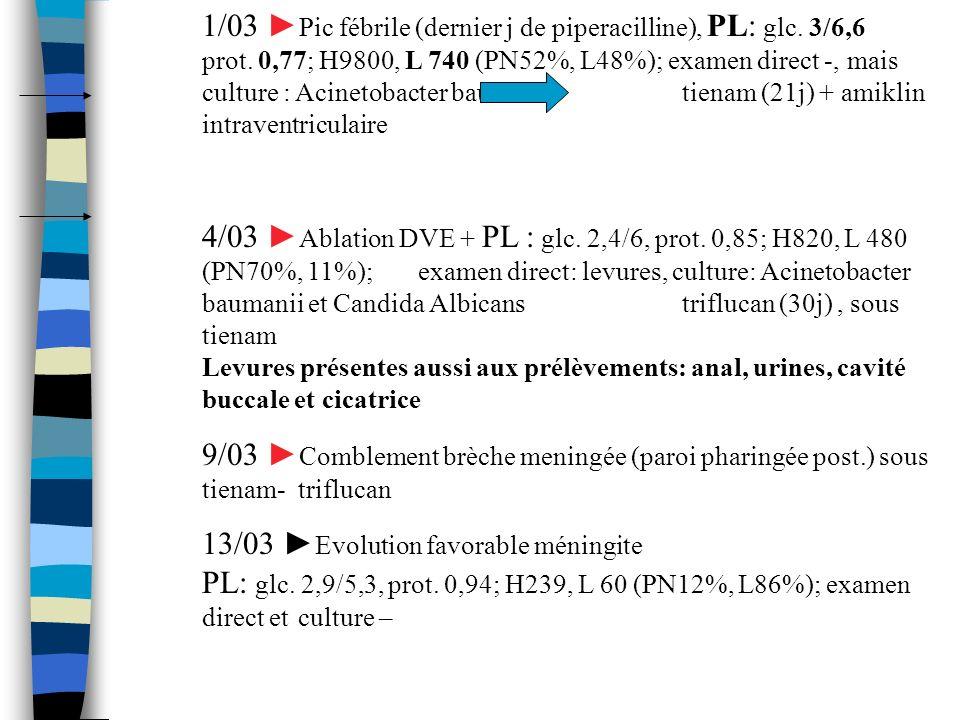1/03 ►Pic fébrile (dernier j de piperacilline), PL: glc. 3/6,6. prot
